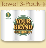 Paper Towel - 3 pack